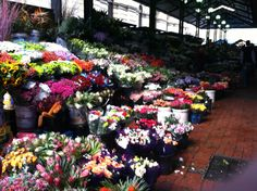 The Flower Market, downtown Cape Town, South Africa Flower Market, Where The Heart Is, Cape Town, South Africa, African, Street, Flowers, Plants, Painting