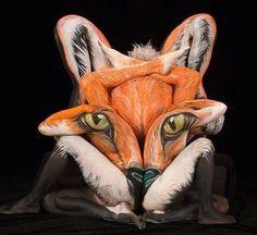 Fox !?
