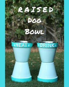 Raised Dog Bowl #MakeADogsDay #NiftyPets