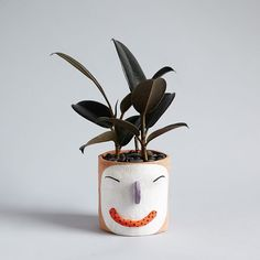 Come On, Get Happy! Our New Face Planter Is Now Available For A Limited.  Face PlantersCeramic Plant ...