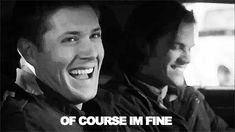 Watch Supernatural they said, it'll be fun they said (gif)