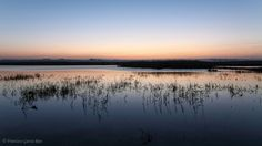 Recesvintus posted a photo:  Música (abrir en nueva pestaña) / Music (Open link in new tab): Nightnoise - Something of Time.  Instantes previos al amanecer en la Laguna Salada de Pétrola (Albacete).  Mi página de Facebook.  -English:  Moments before the sunrise in Pétrola Saltwater Lagoon, Albacete, Spain.  My Facebook Page.  Imagen protegida por Plaghunter / Image protected by Plaghunter  © Francisco García Ríos 2017- All Rights Reserved / Reservados todos los derechos.  El contenido de…