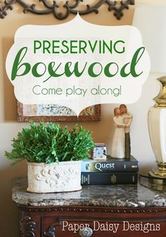 Preserving Boxwood: How to and a Challenge
