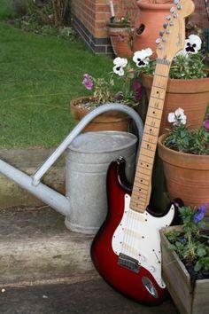 Stratocaster Plus Deluxe