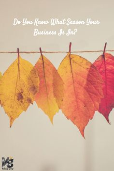 How to plan your Home business like the 4 Seasons and Crush it all year round.