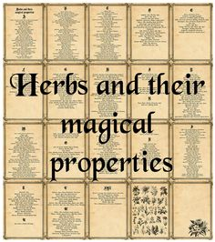 Book of shadows Herbs and their magical properties 20 pages Magic Herbs, Herbal Magic, Wicca Herbs, Tarot, Wiccan Spells, Witchcraft, Eclectic Witch, Practical Magic, Kitchen Witch