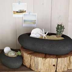 love this from westelm.com.  A rock textured planter that looks like pumice.  The would work very well for cactus collections and bonsai