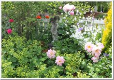 Looks like Lady's Mantle in front, Peony surrounding statue, a rose to the back left, white campanula back right, and probably a golden cypress shrub just out of the frame.  Maybe hardy geranium lower right?