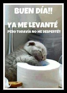 Buenos Dias http://enviarpostales.net/imagenes/buenos-dias-1684/ #buenos #dias #saludos #mensajes