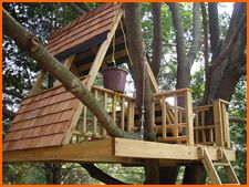 Google Image Result for http://www.homehelp4u.net/images/tips_hints_planning/open_tree_house.jpg