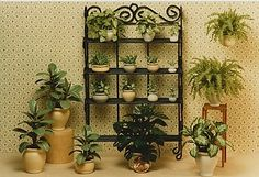 a mini a day - Mini plants and pots handmade by Carolyn Mohler. ...