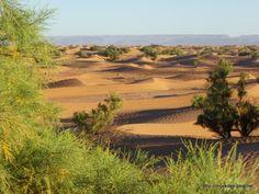 Dans la vallée du Drâa aux portes du désert marocain…