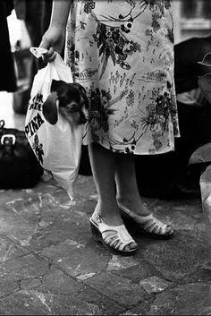 'Hitching a Ride' Elliott Erwitt Black N White, Black White Photos, Black And White Photography, Documentary Photographers, Famous Photographers, Elliott Erwitt Photography, Susan Sontag, Black Picture, Henri Cartier Bresson