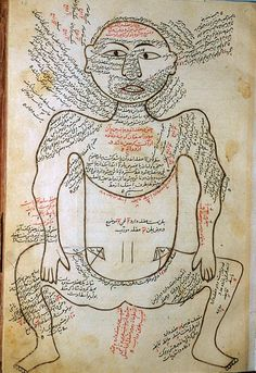 Muscle figure, shown frontally, with extensive text denoting muscles.  From The Anatomy of the Human Body (Tashrih-i badan-i insan) written in Persian at the end of the 14th century by Mansur ibn Ilyas.