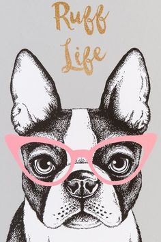 Ruff Life Dog Canvas Wall Decor- gift-clalternate - Tap the pin for the most adorable pawtastic fur baby apparel! You'll love the dog clothes and cat clothes! Boston Terrier Kunst, Boston Terrier Love, Boston Terriers, Animal Paintings, Animal Drawings, French Bulldog Art, Canvas Wall Decor, Arte Pop, Jolie Photo