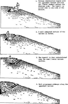 Soil conservation techniques for hillside farms: Traditional Honduran hill side farming techniques and resulting problems