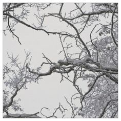 Dry Branches Of Tree Fabric