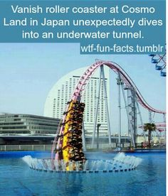That's awesome I would wanna get on that roller coaster