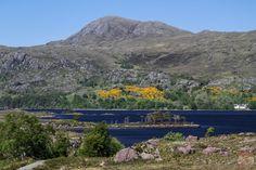 Que visiter en Ecosse - Loch Maree