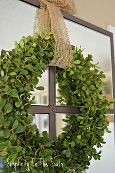 How to make a boxwood wreath.