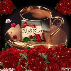 صباح الورد فوفا  Foufa