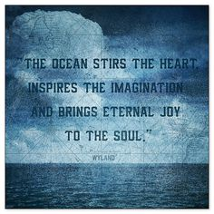 the ocean stirs the heart, inspires the imagination and brings eternal joy to the soul. Quote by Wyland.