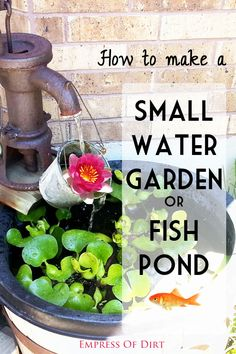 Would you like a little water feature in your garden? Adding a small pond is one of the best things I ever did for my garden. With the addition of fresh, flowing water, it immediately became the central,. - My Gardening Today Outdoor Projects, Garden Projects, Diy Projects, Small Water Gardens, Small Ponds, Small Fish Pond, Fish Ponds, Water Features In The Garden, My Secret Garden