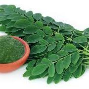 Moringa Available in wholesale and export quanity.  Shipped worldwide at http://homemade.com.ng/product/moringa/