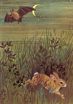 In the Middle of the Night Illustration by Adrienne Adams