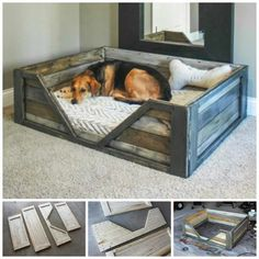 Here we have this simple yet purposeful pallet wood dog bed. This crate style pallet wood dog bed is rustic and spacious. You just have to add a comfy mattress for your doggy to have a sound sleep. Pallet Crafts, Diy Pallet Projects, Home Projects, Woodworking Projects, Pallet Ideas, Woodworking Plans, Woodworking Furniture, Diy Projects With Wood, Wood Crafts