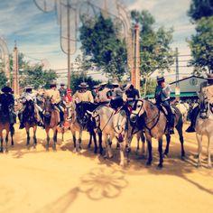 Feria del Caballo 2013 - Jerez de la Frontera