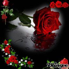hope you like this rose blingee i made!