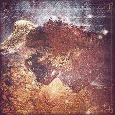 "Belie My Burial ""Pale Beyond"" 2012 / thelastdisaster.net #deathcore"