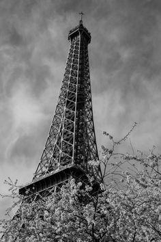 Eiffel Tower Paris [OC] [3264  4896] via Classy Bro