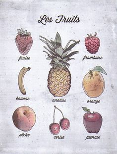 French Language Food Poster, Fruits