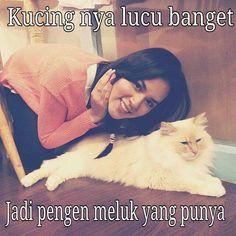 kucingnya lucu ;p