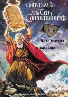 Cat Bible Story