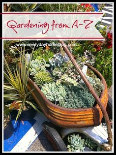 Container Gardening at The Everyday Home