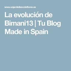 La evolución de Bimani13   Tu Blog Made in Spain