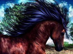 Wild Horse Art Work