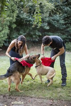 Ian and Nikki with their fur kids