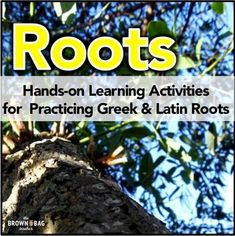 Greek and Latin Root Word Games: Hands-on Learning by Catherine Reed - The Brown Bag Teacher Word Study, Word Work, Latin Root Words, Word Structure, Grammar Questions, Prefixes And Suffixes, Hands On Learning, Word Games, Student Teaching