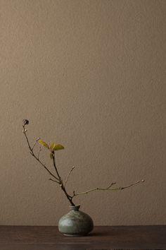 2012年3月25日(日) 利休梅は花どきより芽出しの頃に本性があらわれます。 花=利休梅(リキュウバイ) 器=高麗青磁堆白油壺(高麗時代)