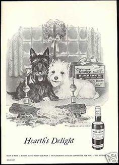 Scottish Terrier Westie Christmas B Scotch (1957)