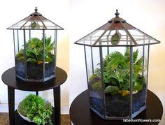 vintage glass terrarium