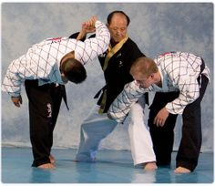 Hapkido | Hapkido - fight-quest
