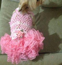 vestido pet confeccionado em tecido macio e maleavel, com rendas e flores , tamanhos PP, P, M , o lacinho e brinde . R$ 34,99