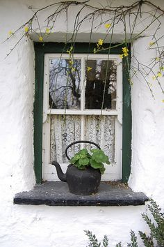 Irish cottage, White windows, rich green trim around the white stone. Irish Cottage, Cozy Cottage, Cottage Style, Old Doors, Windows And Doors, Ventana Windows, Cottage Windows, Rustic Windows, Window View