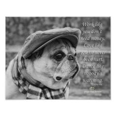 This cute poster features our brother, Ollie J de Pug! Pugs and Kisses on Zazzle Lovepugsandkisses: Art: Zazzle.com Store