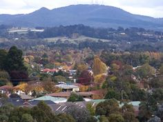 Orange, NSW 90s Childhood, Childhood Memories, Orange City, Footprints, South Wales, Beautiful Islands, Regional, Places Ive Been, Dolores Park